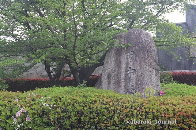 14-0425田中橋IMG_0323