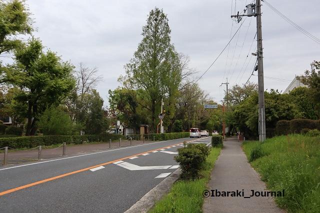0412-11聖火リレー川端通りIMG_0138