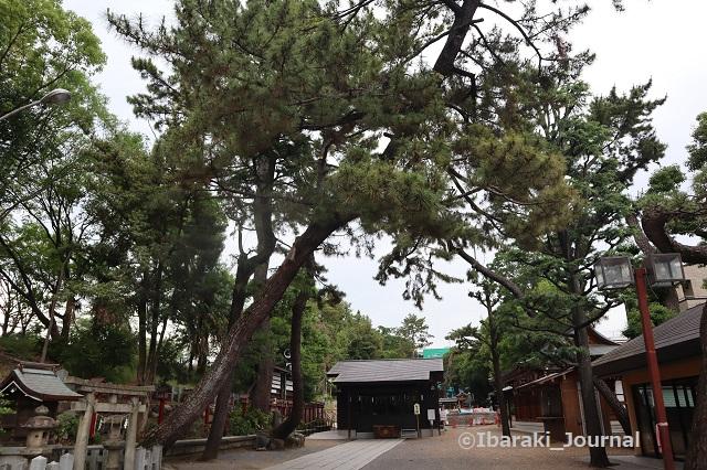 0606茨木神社境内2IMG_1041