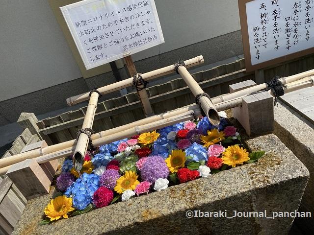 茨木神社1花手水