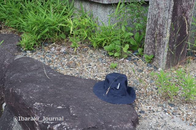 0612茨木神社そば落とし物IMG_1343