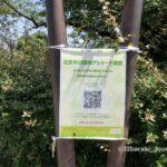0601元茨木川緑地のアンケートIMG_2705