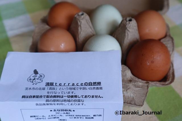 0602清阪テラスたまごIMG_0953