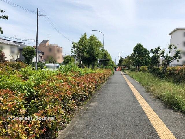 桑田町東信号から南を見るIMG_2939