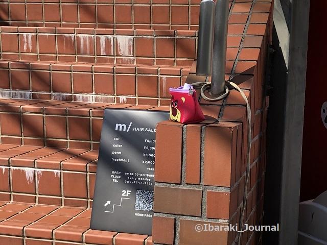 喫茶物語そば階段に落とし物IMG_2740