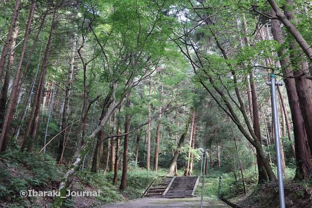 0711春日神社の階段3IMG_2190
