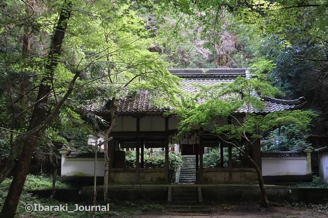 0711春日神社本殿のほうIMG_2194
