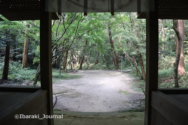 0711春日神社戻りの風景IMG_2206