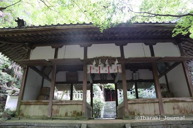 0711春日神社本殿のほうIMG_2197