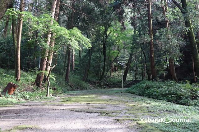 0711春日神社の階段4IMG_2191