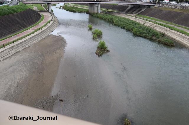 100822五十鈴橋から安威川見るIMG_3190
