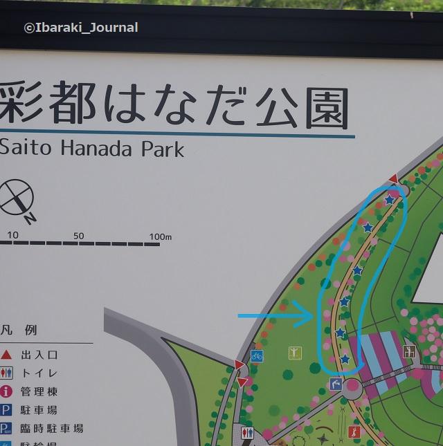 彩都はなだ公園健康器具のところマップIMG_2554