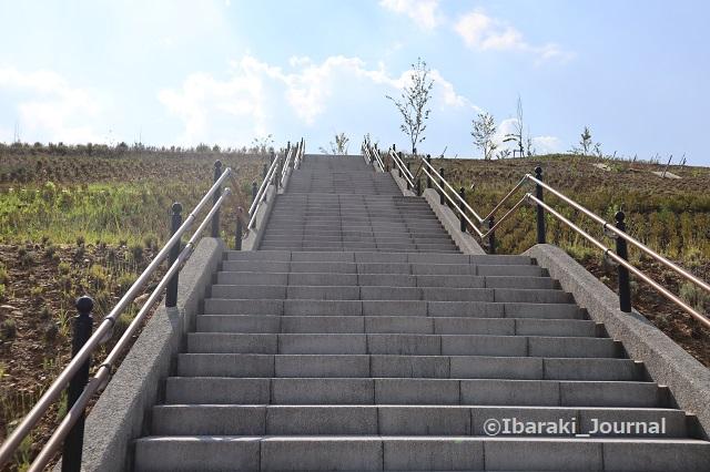 彩都はなだ公園階段のぼるIMG_2592