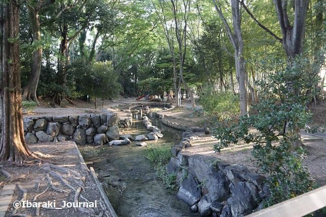 0825西河原公園グラウンド横2IMG_3360
