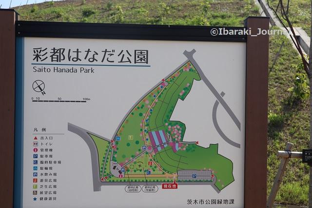 彩都はなだ公園マップIMG_2554