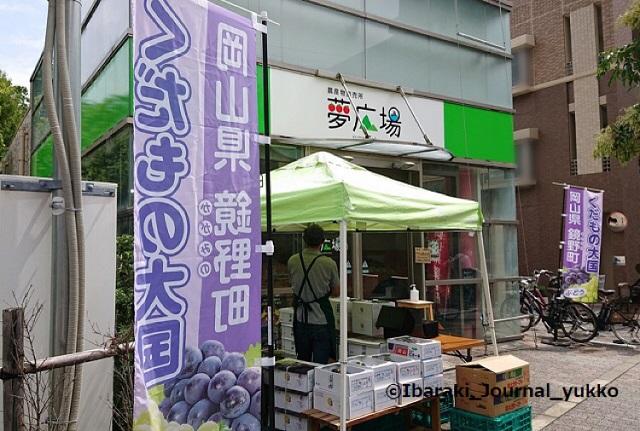 夢広場外観DSC_0576