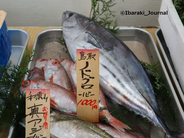 0927さかな屋さんの活魚IMG_4577