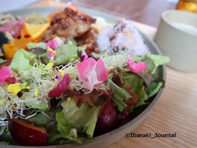 お茶とお花とモンブランランチサラダのところIMG_4693
