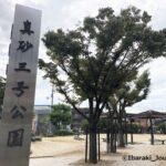 1012真砂3号公園20211013041111 (2)